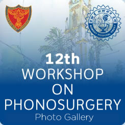 12th Workshop on Phonosurgery